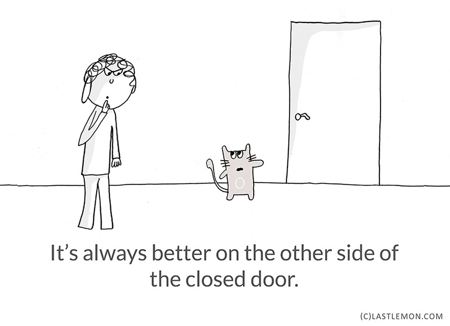 21-Hilarious-Cute-and-Insightful-Life-Lessons-from-Cats17__880