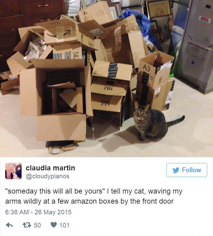 funny-cat-tweets-214__700