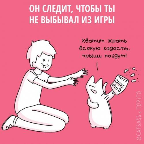 1455107025_koshki-i-rasstavanie-1