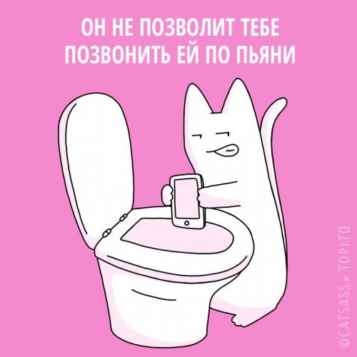 1455107060_koshki-i-rasstavanie-9