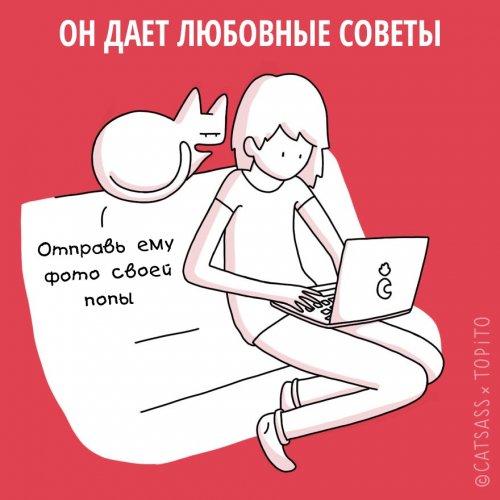 1455107068_koshki-i-rasstavanie-4