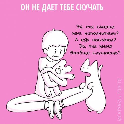 1455107094_koshki-i-rasstavanie-7