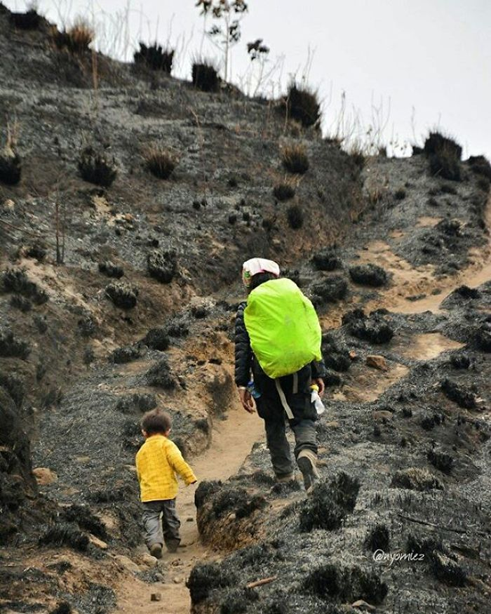 meet-max-a-3-years-old-toddler-who-have-hiked-15-mountains-in-indonesia-6__700