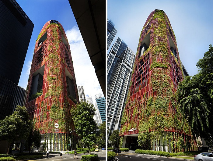 plant-hotel-071216-1156-06