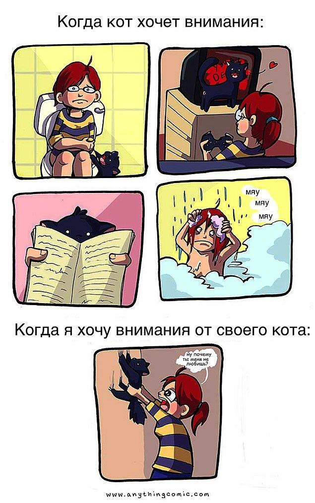 komikse-zabavnom-kotom-komiksy-kartinki-komiksy_3287445391