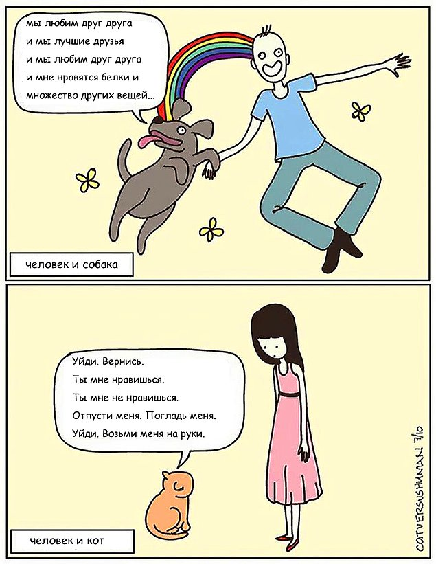 komikse-zabavnom-kotom-komiksy-kartinki-komiksy_5469586046