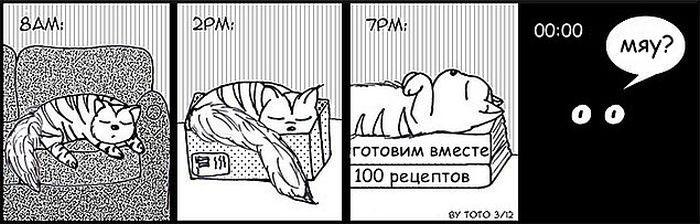 komikse-zabavnom-kotom-komiksy-kartinki-komiksy_639197898