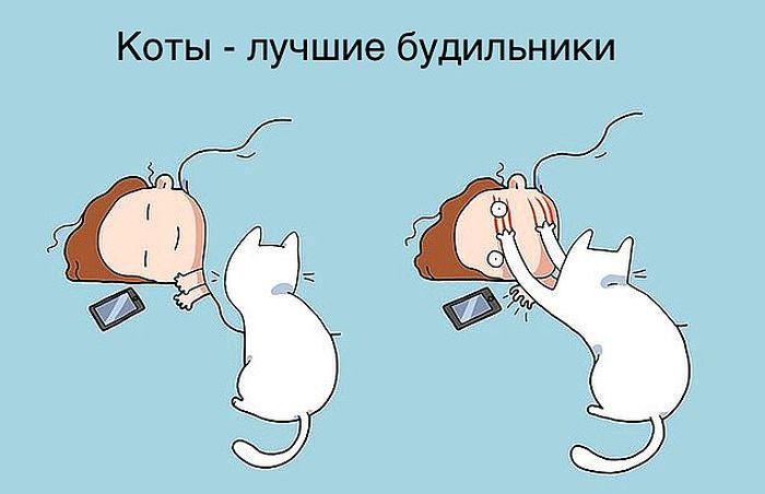 komikse-zabavnom-kotom-komiksy-kartinki-komiksy_7323629929