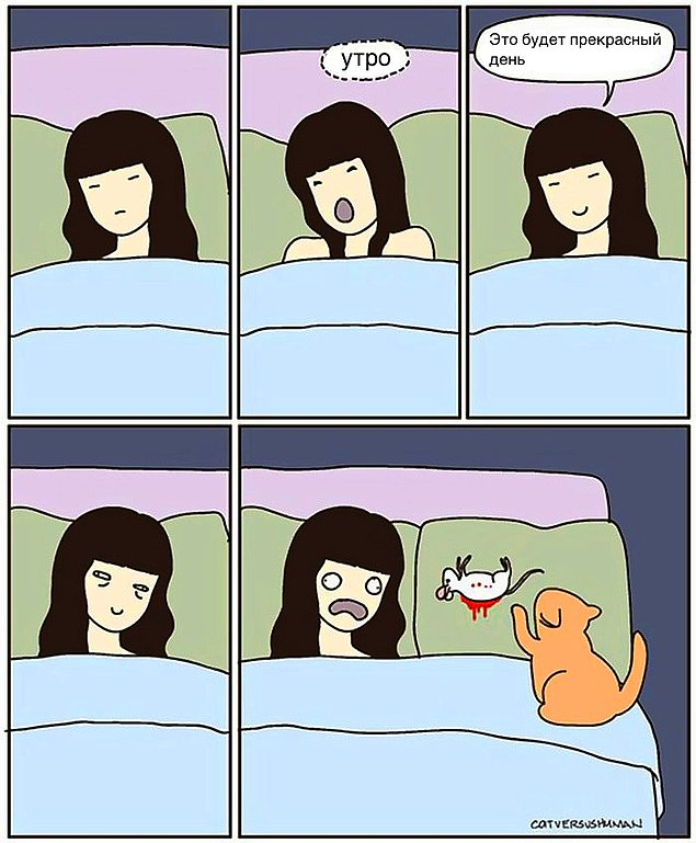 komikse-zabavnom-kotom-komiksy-kartinki-komiksy_771686165